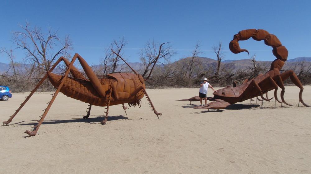 Preparing to do battle - a scorpion and an grasshopper