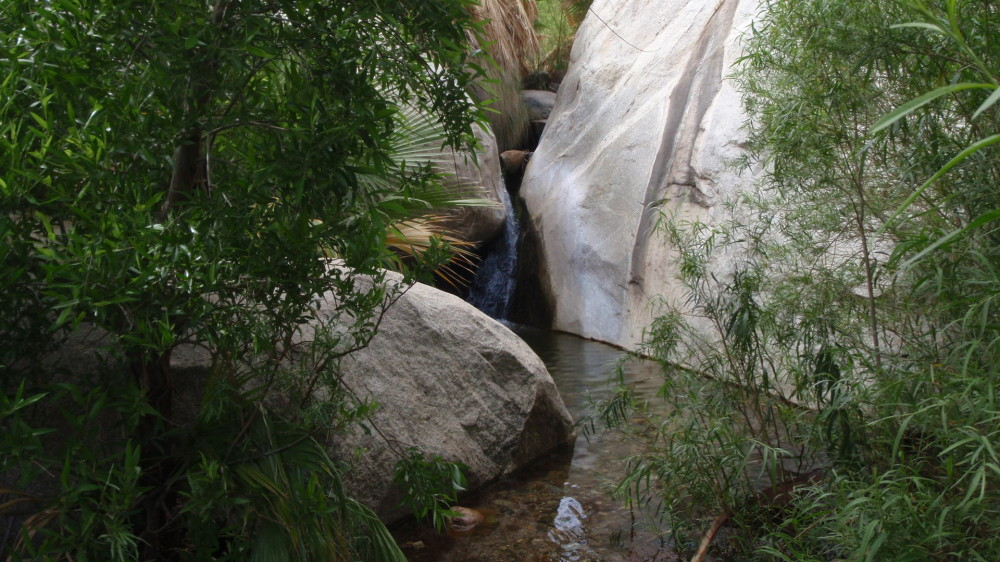 Clean spring water - this sets Borrego Springs apart from the surrounding desert park