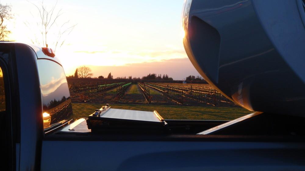 Sunset over the vineyard.